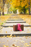 Vintage suitcase with pink scarf on alley Stock Photography