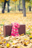 Vintage suitcase Royalty Free Stock Photo