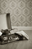 Vintage suitcase with red female shoes Stock Image