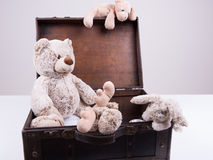 Vintage suitcase on white background with Teddy Royalty Free Stock Photos