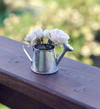 Vintage summer background with small roses in watering pot Stock Photography