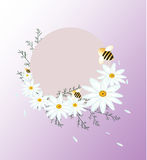 Vintage Summer chamomile flowers card, round decoration for wedding, quotes, Birthday, invitations, greeting cards. Print blogs royalty free illustration
