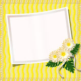 Vintage summer framework. For invitation or congratulation Stock Photography