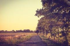 Vintage summer landscape at sunset. Royalty Free Stock Photo