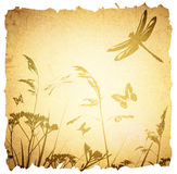 Vintage Summer Meadow Background Stock Photo