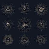 Vintage sunburst hipster logo elements Stock Image