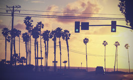 Vintage sunset picture of palms and poles on street against sun. Stock Photos