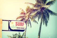 Vintage surf beach house signage and coconut palm tree on tropical beach blue sky. With sunlight of morning in summer,  retro filter Stock Photos