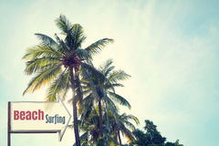 Vintage surf beach signage and coconut palm tree on tropical beach blue sky Royalty Free Stock Photo