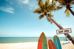 Vintage surfboard with palm tree on tropical beach in summer. Vintage color tone Stock Photography