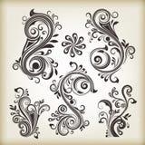 Vintage swirly design elements Stock Photos