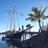 Vintage Tall Ship, tropical marinescape. Majestic vintage Tall Ship moored at tropical Tin Can Bay, Queensland, Australia. Brilliant blue sky backdrop and green royalty free stock photos