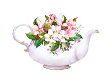 Vintage tea pot - apple, cherry flowers. Watercolor Royalty Free Stock Image