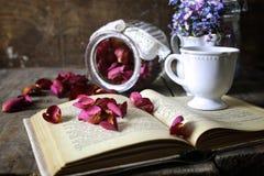 Vintage tea rose dry petal Stock Photography