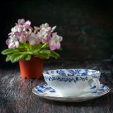 Vintage teacup and saucer, close up on a dark wooden background royalty free stock photo