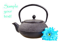 Vintage  teapot Royalty Free Stock Photo