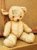 Vintage teddy bear with old suitcases Royalty Free Stock Photo