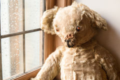 Vintage Teddy Bear Stock Images