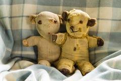 Vintage Teddy Bears Fotografia de Stock