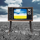 Vintage television with rice seedlings germinated eco friendly c Royalty Free Stock Photography
