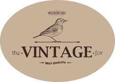 Vintage Template Emblem Royalty Free Stock Photo