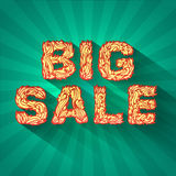 Vintage text big sale with fire texture on green. Background concept. vector illustration design Royalty Free Stock Photos