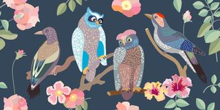 Wide panoramic vector patterns with owls, woodpeckers, roses and branches. royalty free illustration