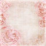 Vintage texture background. Rose vintage background - page of wedding album Royalty Free Stock Image