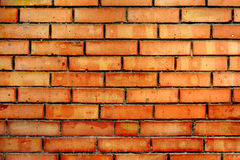 Vintage texture Red brick wall Stock Images