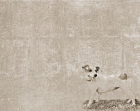 Vintage texture with a small dog. Abstract vintage textured background with a sketch of a small dog Royalty Free Stock Photos