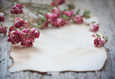 Vintage textured background with old paper dry tea roses Royalty Free Stock Photo