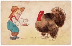 Vintage Thanksgiving Postcard Turkey. Antique Thanksgiving postcard from 1908 featuring a young boy feeding a large tom turkey Stock Image