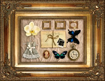 Vintage things in golden frame Royalty Free Stock Photo