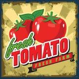 Vintage tomato stock illustration
