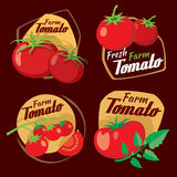 Vintage tomato vector labels, emblems and badges set Royalty Free Stock Images