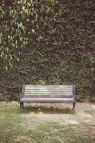 Vintage tone of Garden hedges with a bench Royalty Free Stock Image
