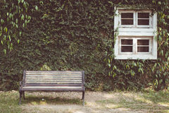 Vintage tone of Garden hedges and vintage window with a bench Stock Photo