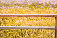 Vintage tone of wood terrace on flower field background Stock Photo