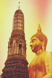 Vintage toned Buddha statue Stock Images