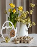 Vintage toned Easter still life with alder branches, daffodil bulbs and quail eggs royalty free stock image