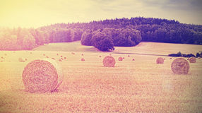 Vintage toned harvested field with hay bales at sunset Stock Photos