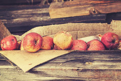 Vintage toned rotten apples in carton on wooden boards Royalty Free Stock Image