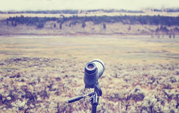 Vintage toned telescope used by wildlife watchers and hunters. Royalty Free Stock Photo