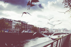 Vintage toned view Ha'Penny Bridge Dublin Ireland Royalty Free Stock Photos