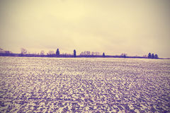 Vintage toned winter peaceful landscape. Stock Photography