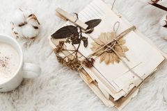 Vintage toning background with old paper. And dry flowers royalty free stock photo