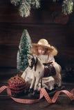 Vintage  toys for christmas Royalty Free Stock Photos