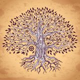 Vintage tree of life illustration Royalty Free Stock Image