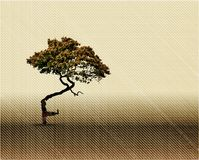 Vintage Tree Silhouette Tapestry. Vector Royalty Free Stock Photo
