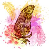 Vintage tribal doodle zentangle feathers Royalty Free Stock Images